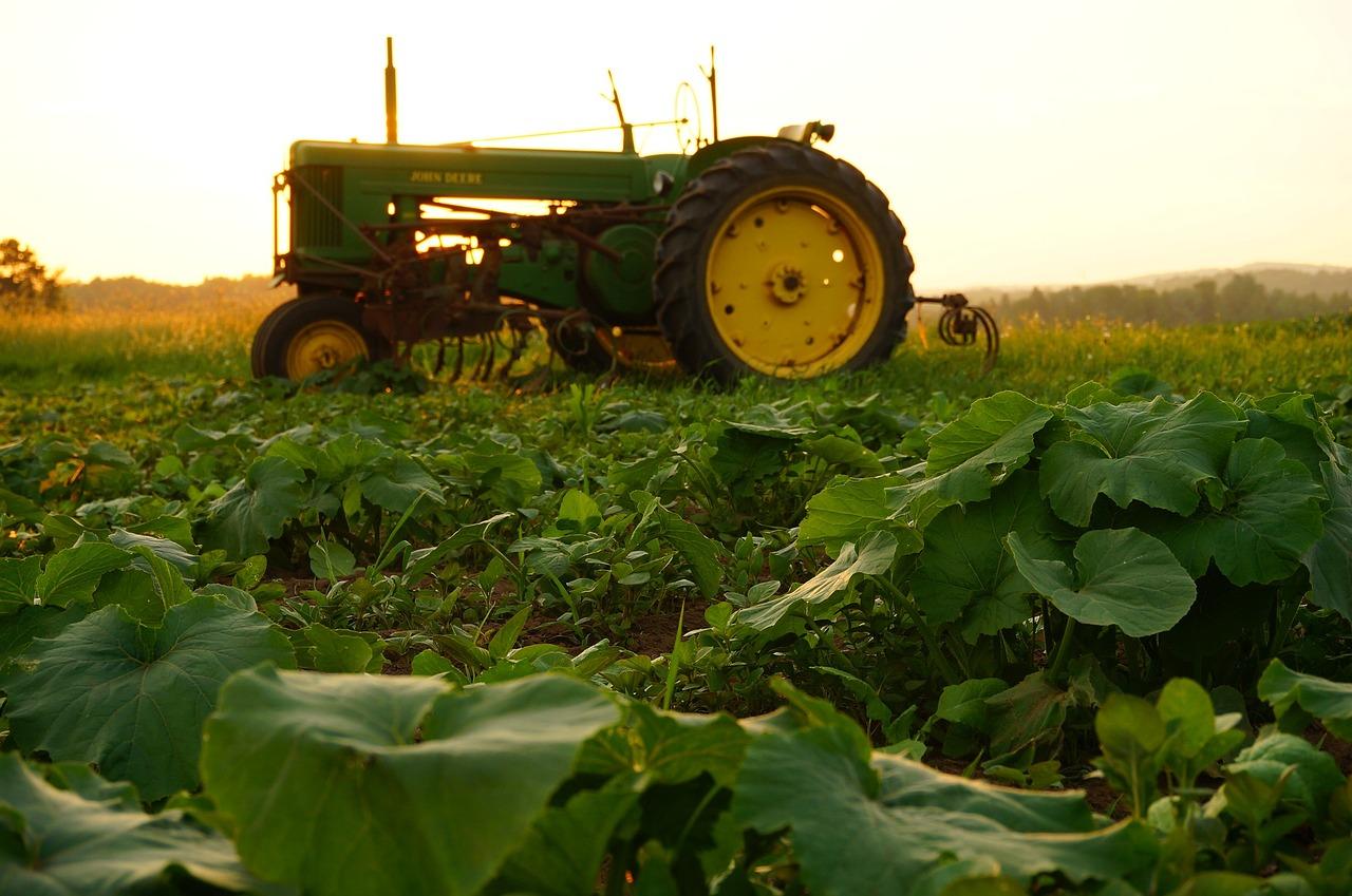 Nuovo corso Provincia di Prato: Agrimarketing - Toscana Formazione